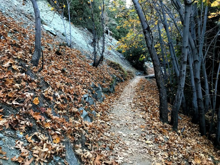 05-fall_hiking-sm